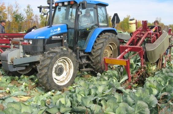 univerco-cabbageharvester