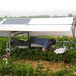 cropcare-PA1600_1