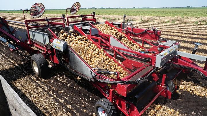 univerco-riderii-onionharvester